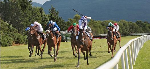 Racing at Killarney
